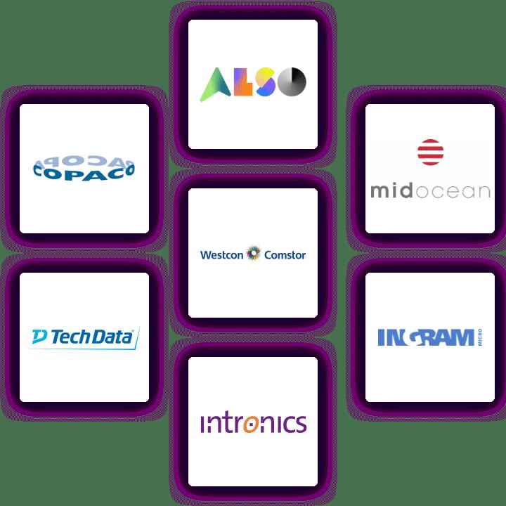 integration with IT distributors